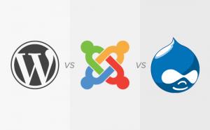 Wordpress, Joomla of Drupal?